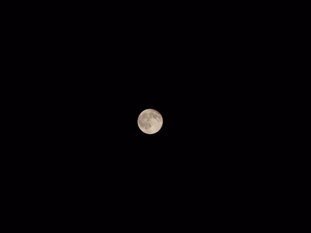 マニュアル(露出),月,撮影,300mm